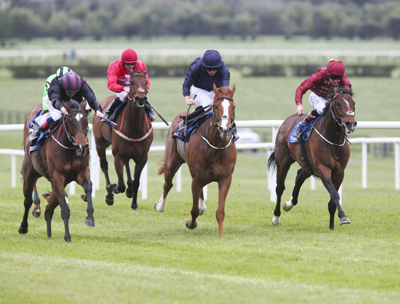 NAAS SUNDAY: Fields sparkles in the Gladness
