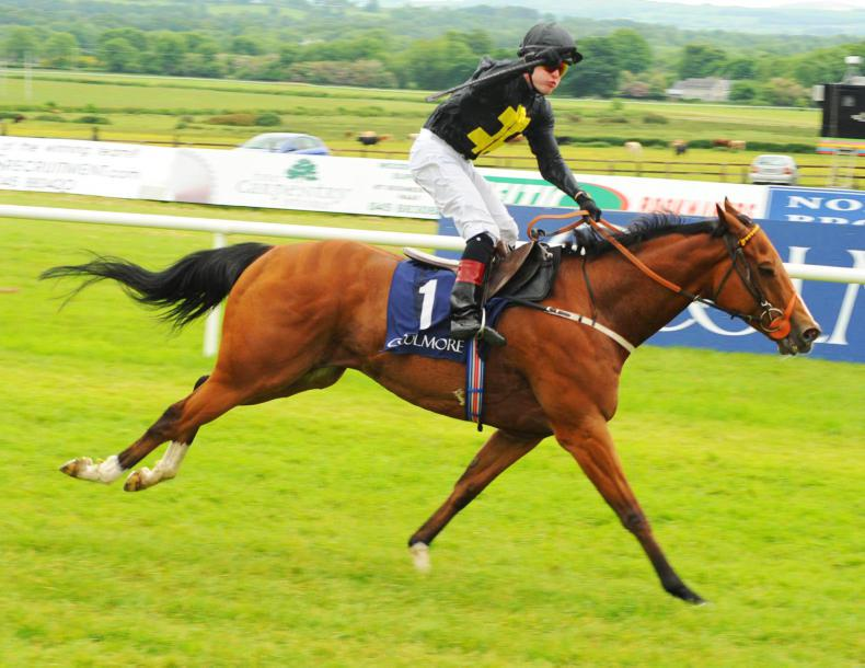 TATTERSALLS GUINEAS SALE:  Find a star at Newmarket