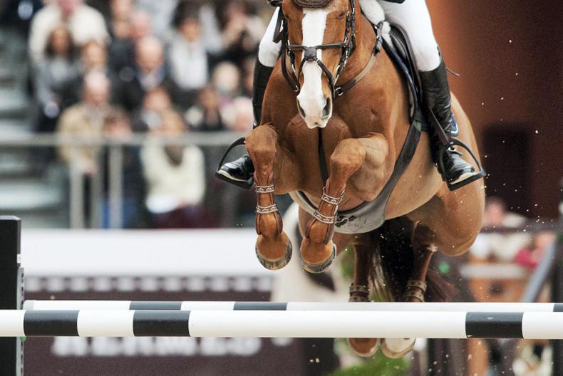 INTERNATIONAL: Irish show jumper flying the flag