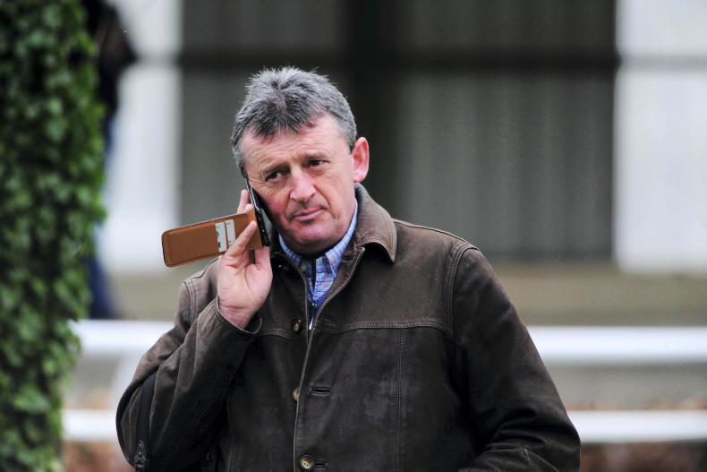 Apple's Jade leads strong Gigginstown House Stud team for Punchestown