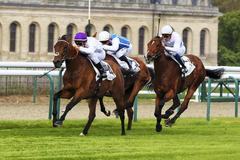 FRANCE: Brilliant Brametot provides respite for Rouget