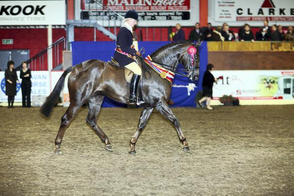 Dancing Queen lands top ridden honours