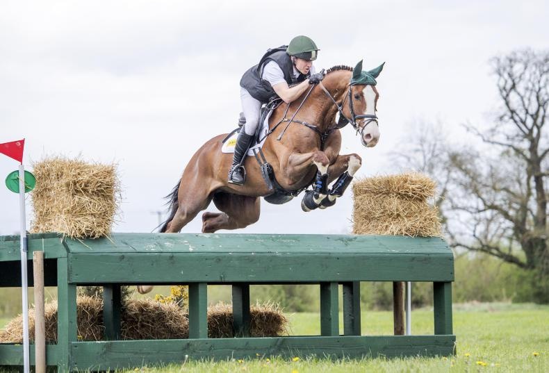 EVENTING CLYDA:  Ballymolloy Rogan delivers for Morrison