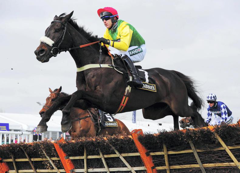 Pingshou added to Champion Novice field at Punchestown