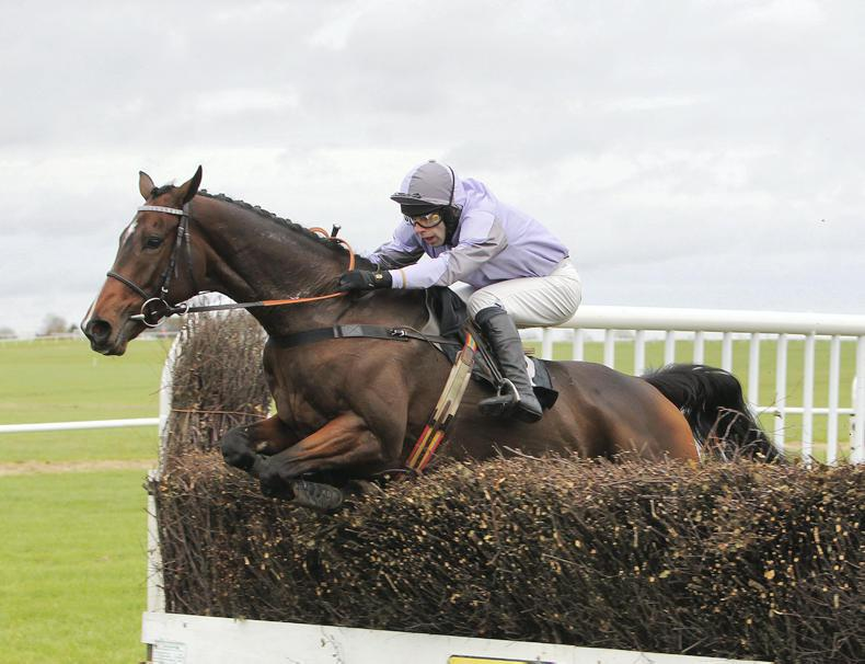 BRITISH POINT-TO-POINT: Chosen Lucky wins number six