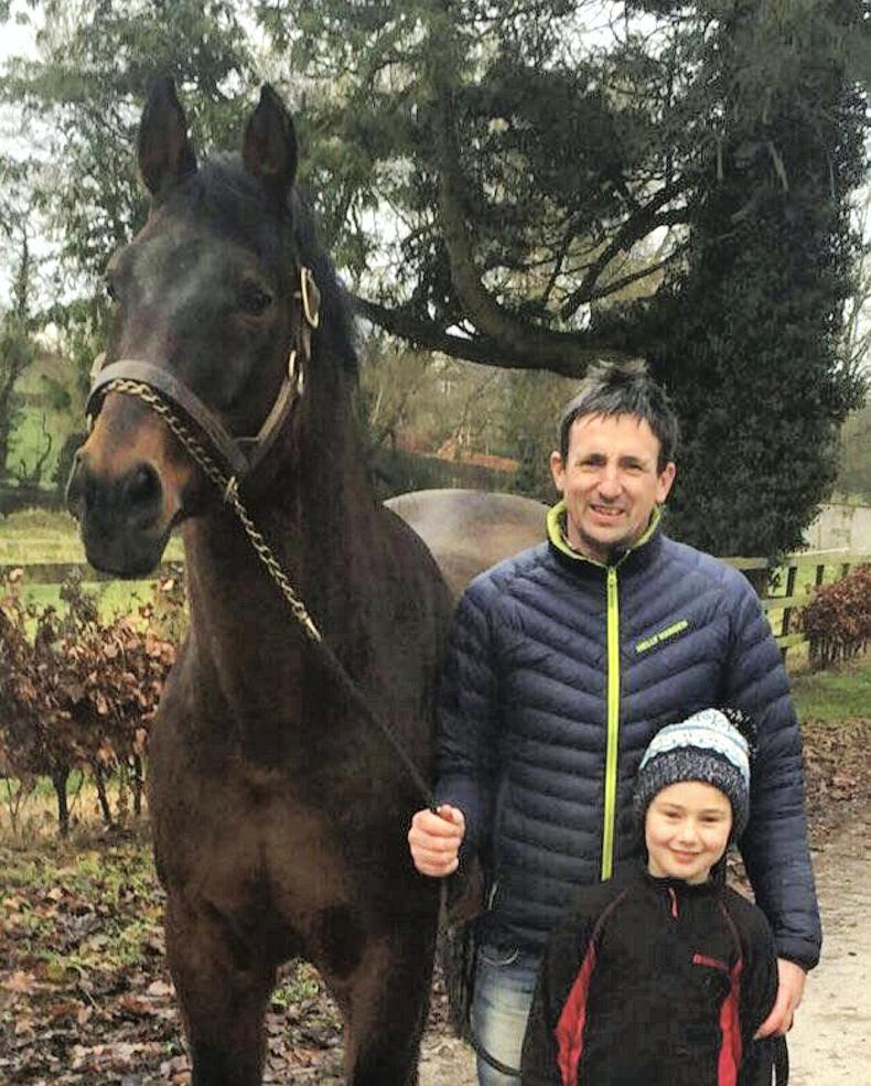 ADVERTORIAL:  The future is bright at Coolballyshan Stud