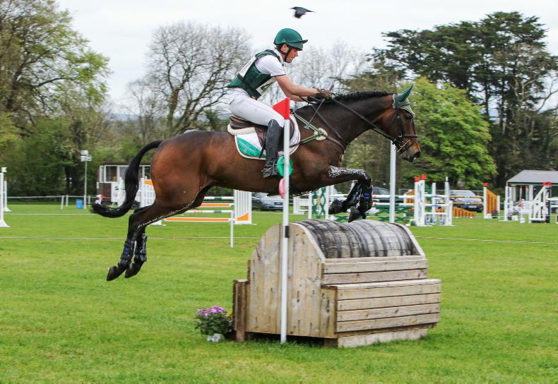 BALLINDENISK: Highlight for Watson in CCI2*