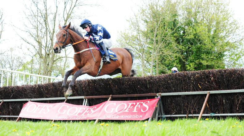 BALLYSTEEN SUNDAY: Champers popped for in-form O'Rourke
