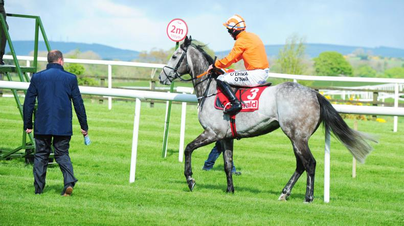 PUNCHESTOWN TUESDAY:  Get out before the Wagon Wheel!