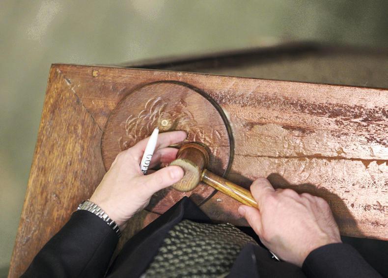 NICK NUGENT: Mullingar host charity auction