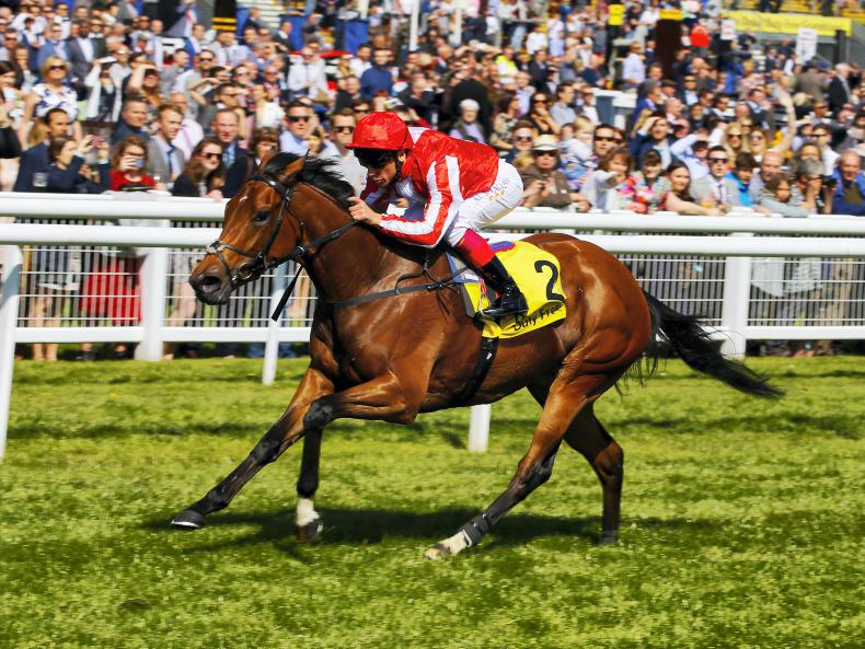 Sepoy flying with first crop fillies