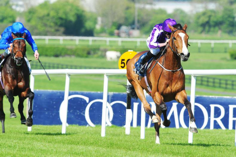 NAAS MONDAY: Minding back with a win in Mooresbridge