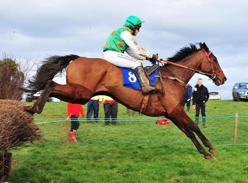 EOGHAIN WARD: Pointing title down to the wire