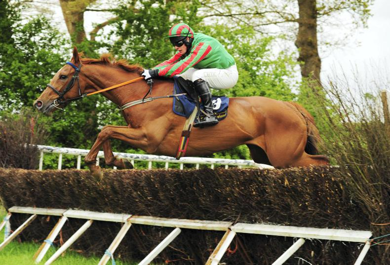 POINT BREEDING ANALYSIS: Connors finds more talent