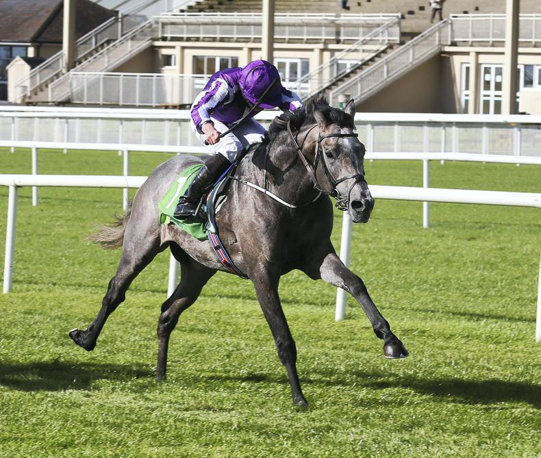LEOPARDSTOWN SUNDAY: Capri can make up ground