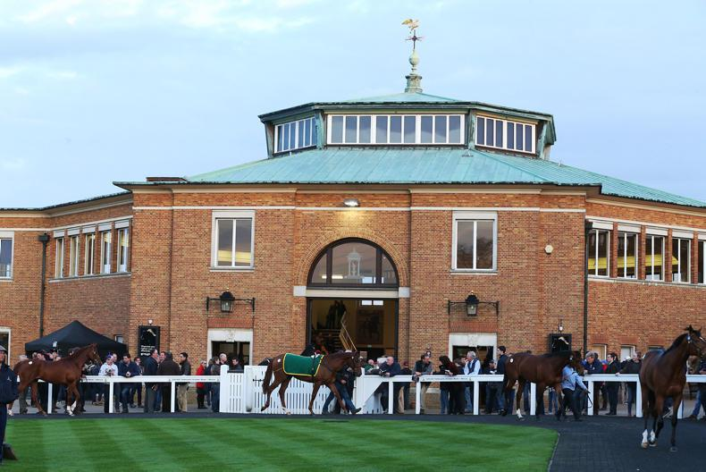 TATTERSALLS GUINEAS BREEZE-UP SALE: Strong trade the hallmark at Tattersalls