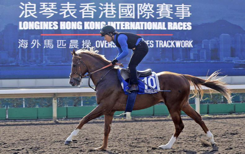 HORSE SENSE: High-tech goggles giving Japanese trainers an edge