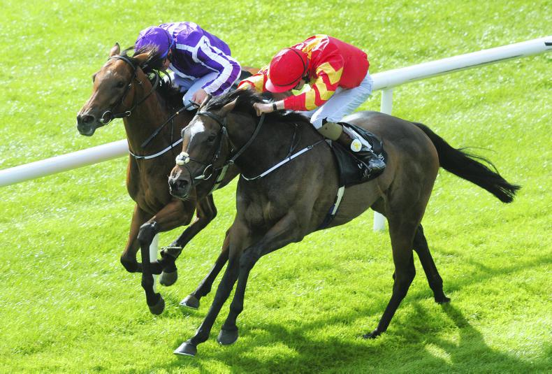 Another first for Joseph O'Brien as Intricately bids for Newmarket Classic