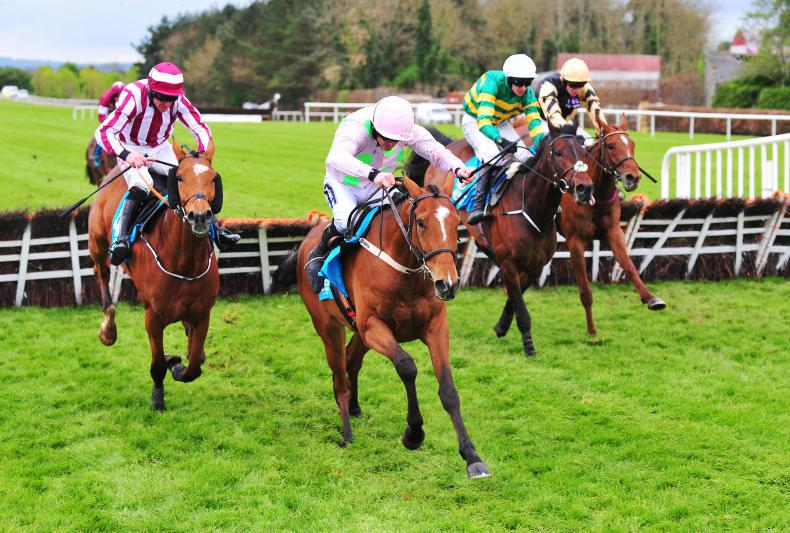 PUNCHESTOWN SATURDAY: Battling Bapaume secures trainer's title for Mullins