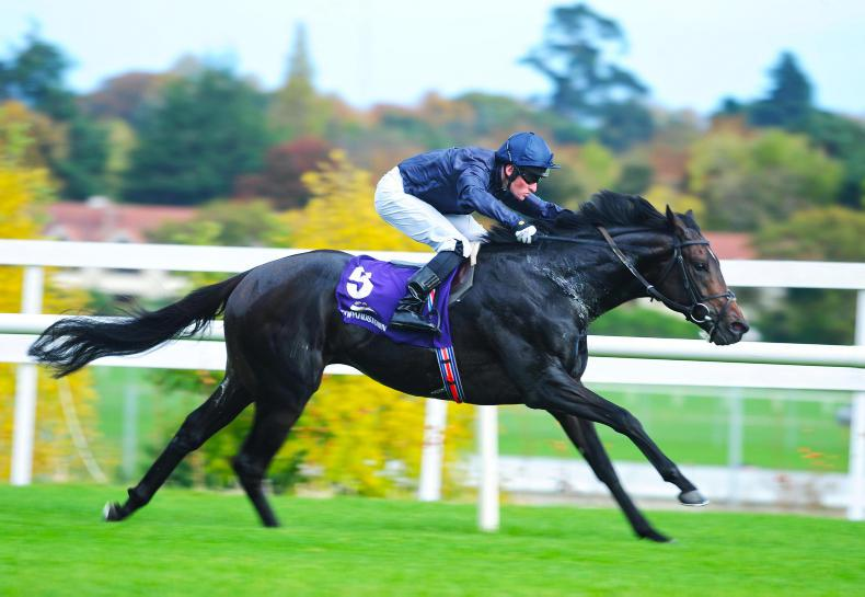 Aidan O'Brien unveils strong Chester squad