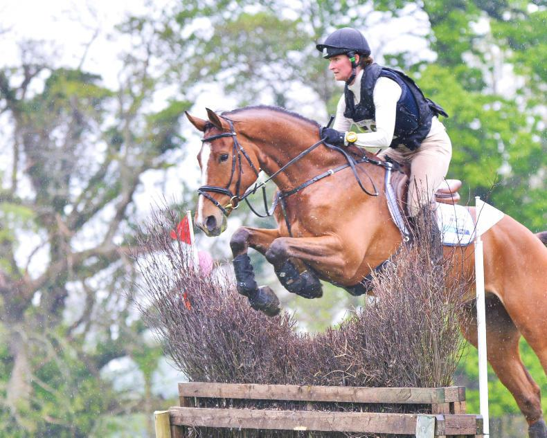 EVENTING: Bonus is target for Shannondale Icarus