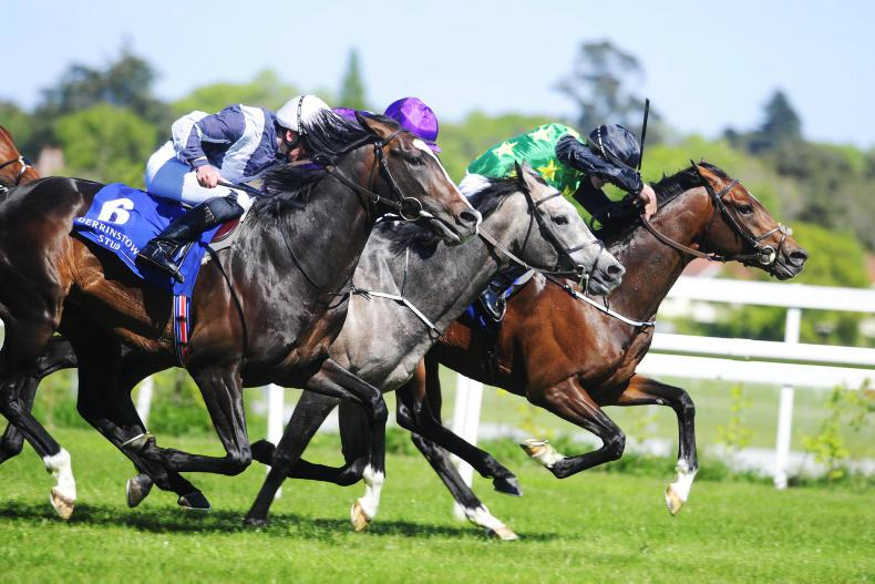 LEOPARDSTOWN SUNDAY: Macarthur takes command