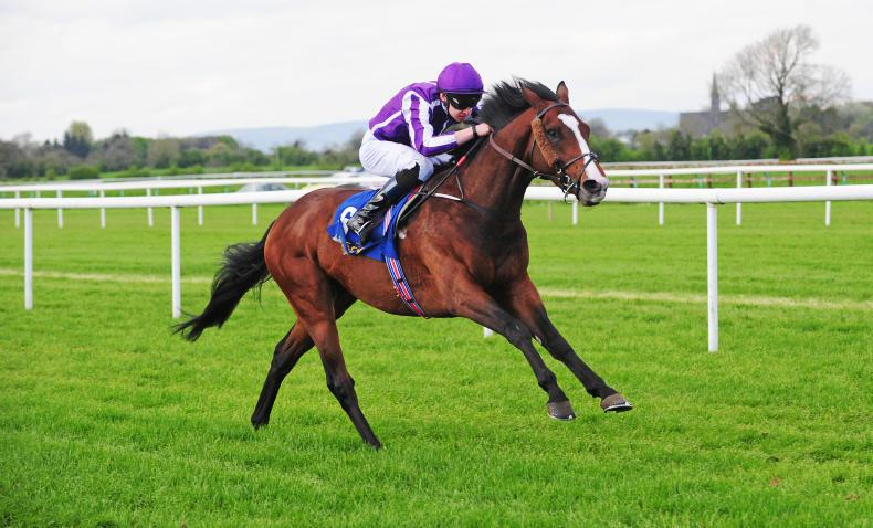 Aidan O'Brien fields four as he bids for eighth Vase victory at Chester