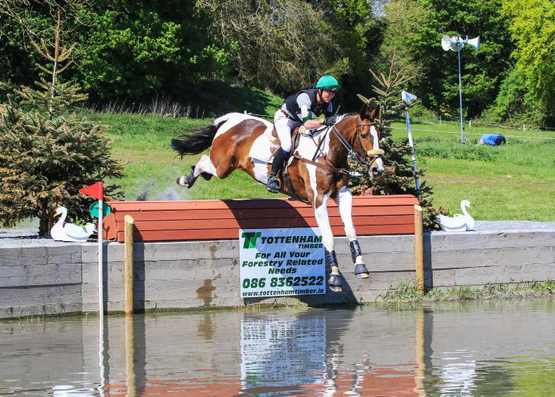 EVENTING:  Endeavour pays off for O'Toole