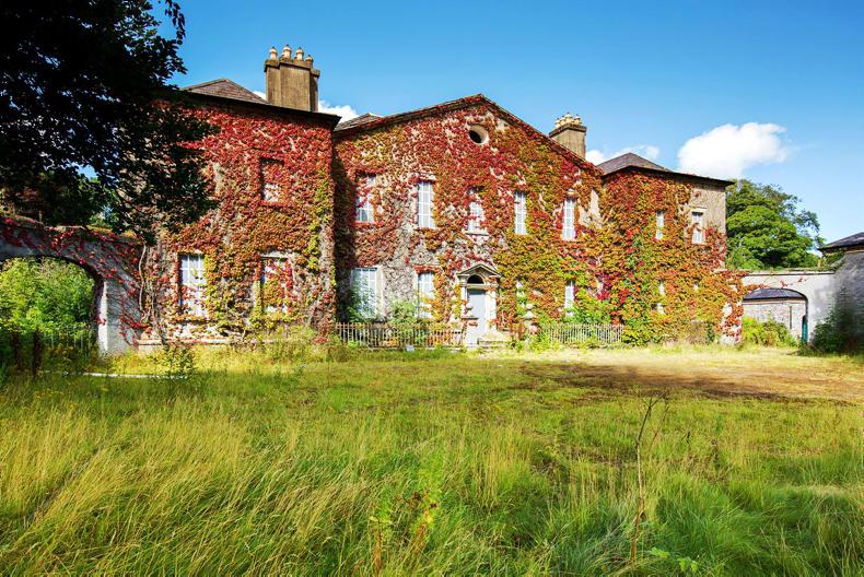 O'Callaghan confirms Landenstown purchase