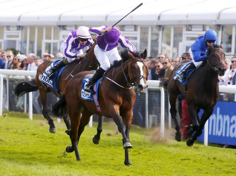 CHESTER THURSDAY: Life's a Beach for O'Brien with Vase 1-2-3