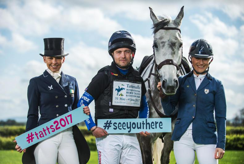 NEWS:  Biggest entry ever for Tatts 2017