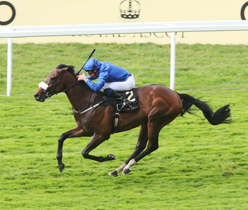 Aidan O'Brien leaves duo in Lockinge Stakes contention