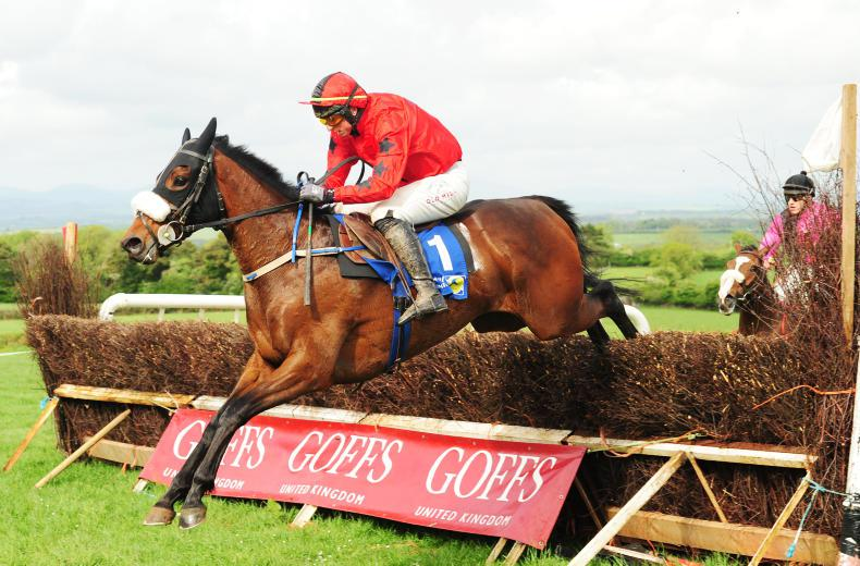 BARTLEMY SUNDAY - UNITED HUNT FOXHOUNDS: Codd keeps up the pace