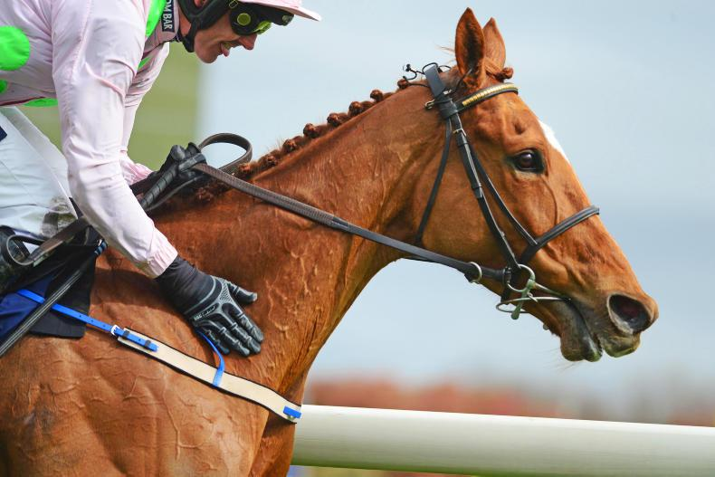 Annie Power tipped to break €1 million at auction