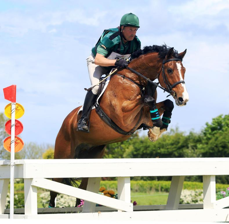 EVENTING: Cairns posts first novice success