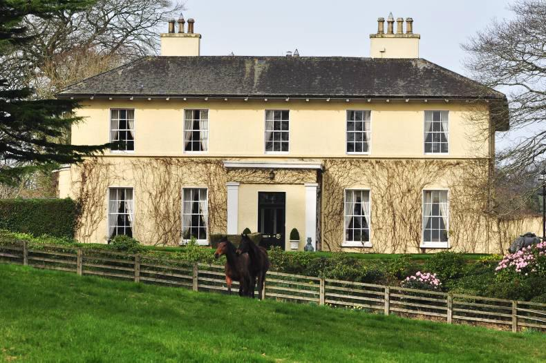 PROPERTY: Capivating Borleagh Manor for sale in Co Wexford