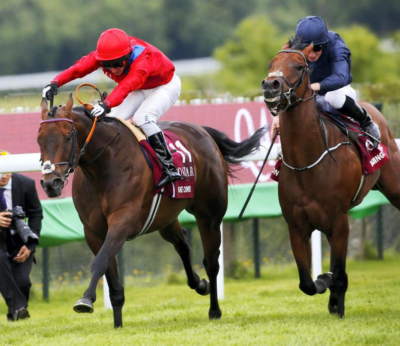 BRITISH PREVIEW: Take Cover for Temple Stakes success