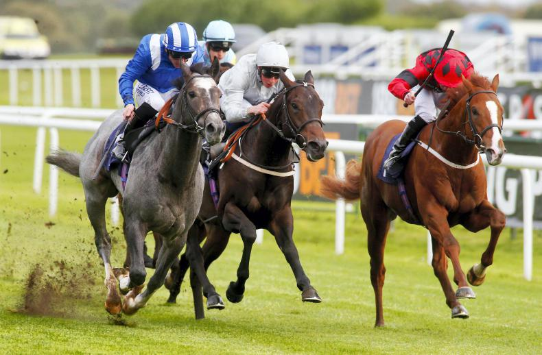 BRITISH PREVIEW: Encore can provide Temple Stakes shock