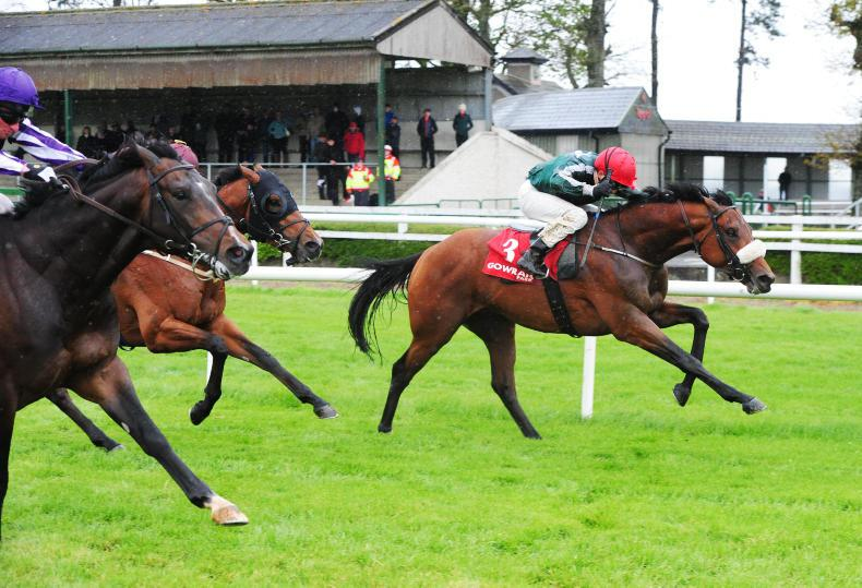 CURRAGH SUNDAY: Quick ground won't be a problem for Red Label