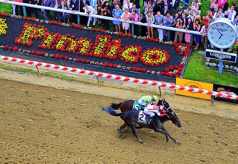 PREAKNESS STAKES: Cloud Computing shocks at Pimlico
