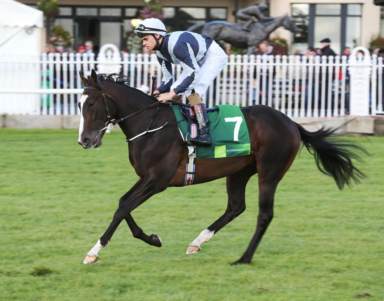 Aidan O'Brien rules Yucatan out of Derby contention