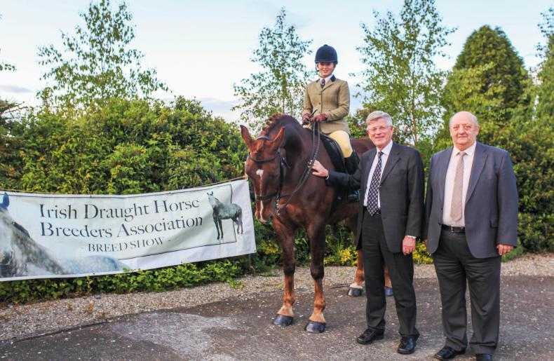 NEWS:  All systems go for IDHBA annual show