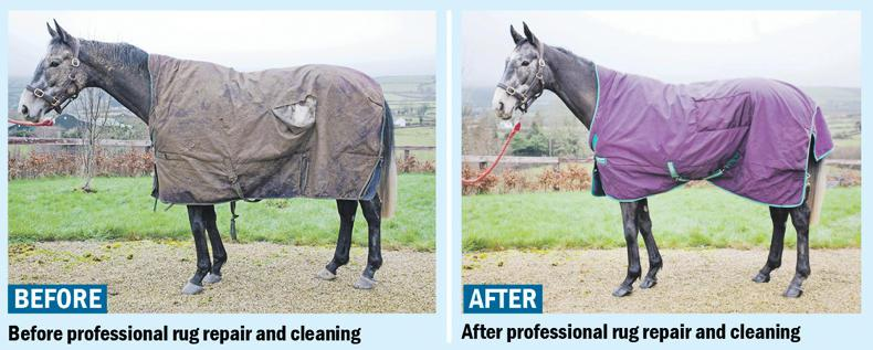 Before And After Professional Rug Repair