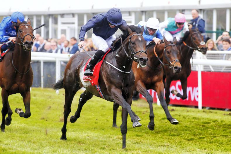 Cliffs Of Moher leads O'Brien charge in Derby