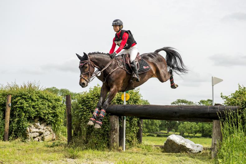 EVENTING:  RLE Nuans T Volt does it for Kenny