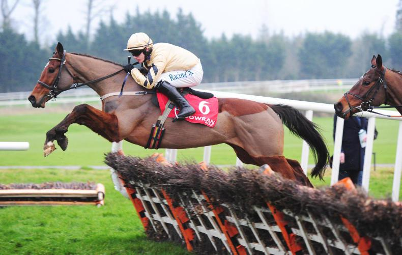 Willie Mullins' stars go international