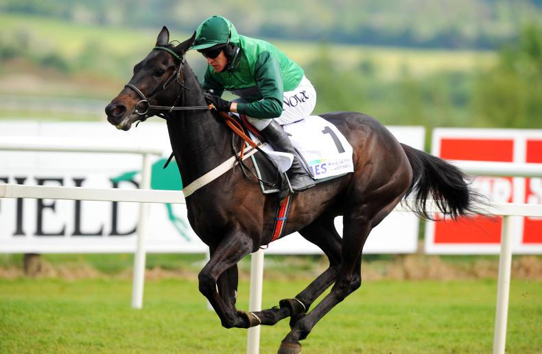 GOFFS LAND ROVER SALE: Top prospects from top sires