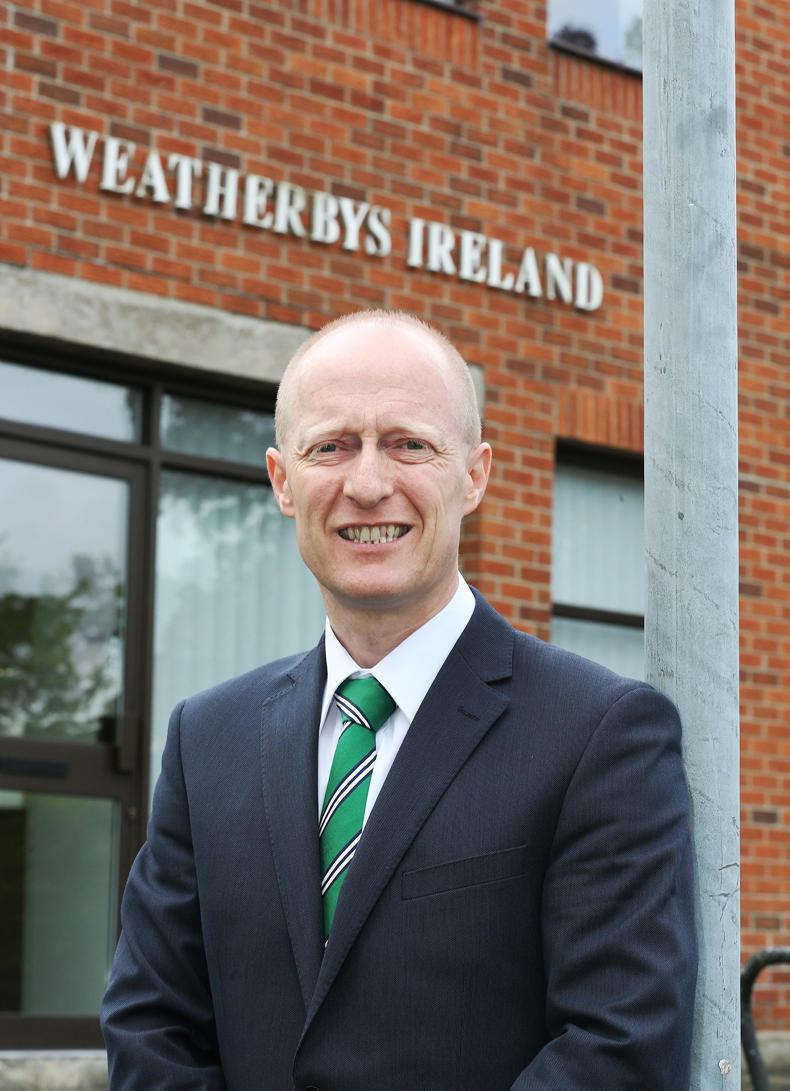 NEWS: Murphy takes up CEO reins at Horse Sport Ireland