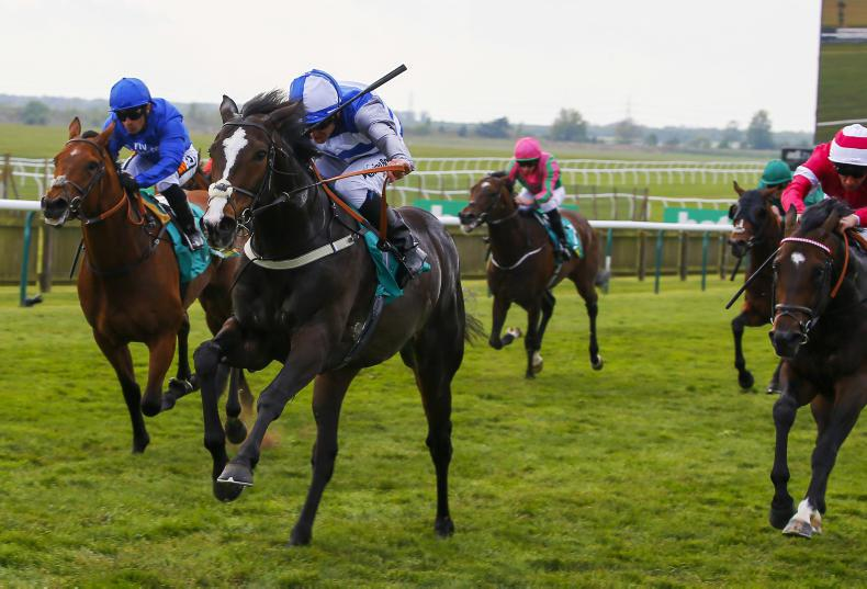 RORY DELARGY: Eminent can ignite Frankel-fever by landing Derby