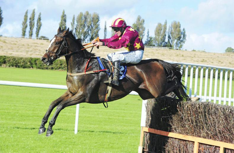 TRAMORE SATURDAY: Heron can hit Heights off favourable mark